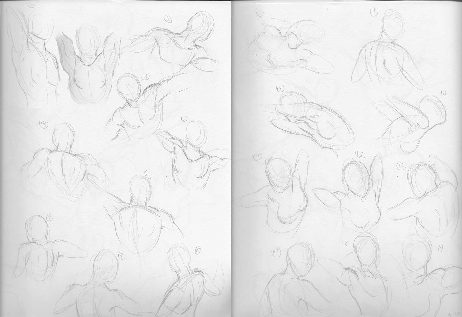 shoulders sketches.